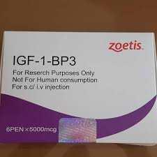 igf1-4